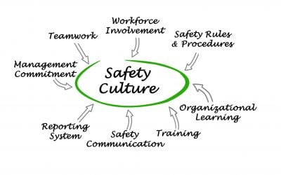 The Management of Safety